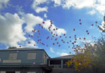 releasing balloons at a funeral - sky full of funeral balloons